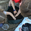 Planting potatoes, cucumber, tomatoes and flowers