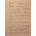 Callum's Global Warming report