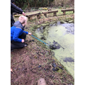 Pond dipping at the start of spring.