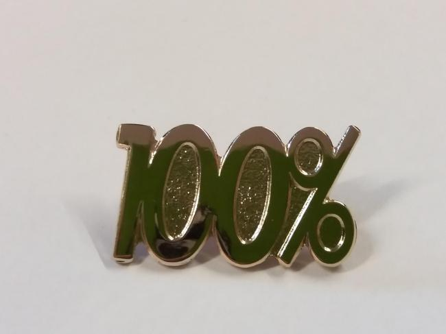 100% Attendance Badge for the whole year