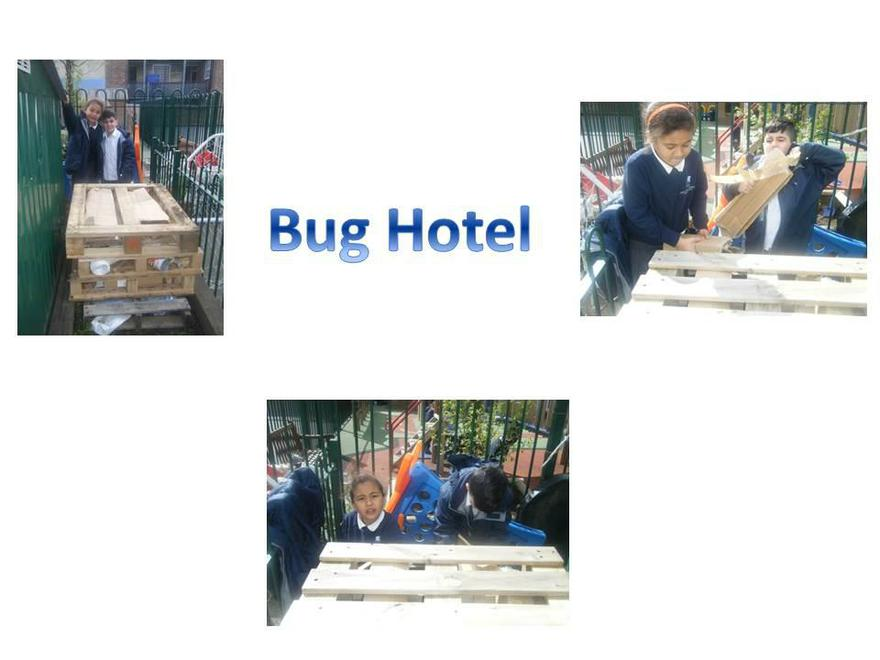 Creating a safe environment for bugs