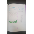 Emily has been exploring questions about plants.