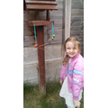 Alexa made wonderful bird feeders!