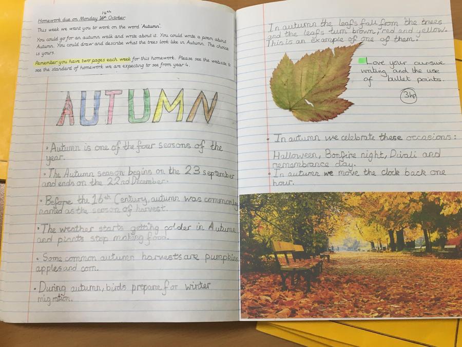 Autumn Hwk
