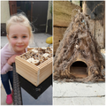 Lilly's bug and Hedgehog house.jpg