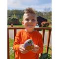 Lucas' Painted Pebbles.jpg