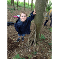 Class 1 child building a den.