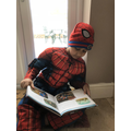 Spiderman does what a spider can...and reads.
