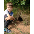 Child finds an animal burrow.