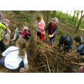 Children work together to collect leaf litter.