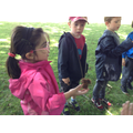 Class 1 children look for bugs.