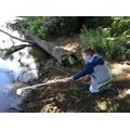 Child pond dipping