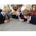 Liquids experiment
