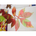 A child's watercolour artwork of a leaf.