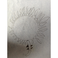Pencil sketch of a sunflower.