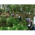 Class 1 off to build a den in the woods.