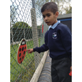 Child counts the spots on a ladybird.