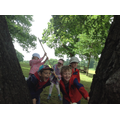 Class 2 looking through the trees.