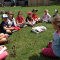 Class 2 children about to go bug hunting
