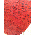 Fallen soldiers names written in poppies.