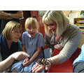Staff and children look closely at a Spider