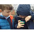 Children spot a woodlouse