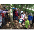 Class 2 test to see if the den is waterproof