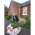 Teacher, Mrs Bryon helping to clear shrubbery.