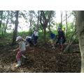 Class 2 collect sticks to build a den.