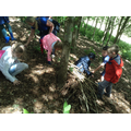 Children work together to collect sticks for a den