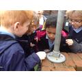 Children look at living creatures.