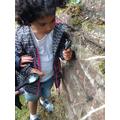 Year R child on a bug hunt.