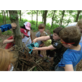Class 1 work together to build a den.
