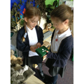 Role play animal care centre