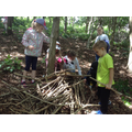 Children collects sticks to build a den.