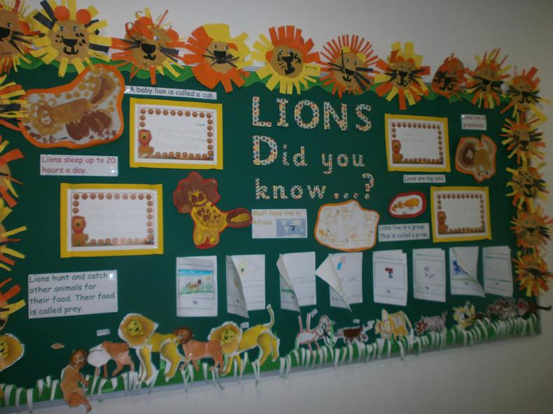 Look what we know about lions!