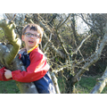 We love to climb trees at Forest School.