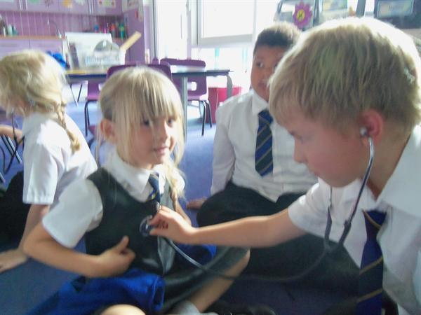 Listening to each others heartbeat in Science