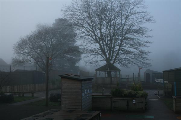 A foggy day!