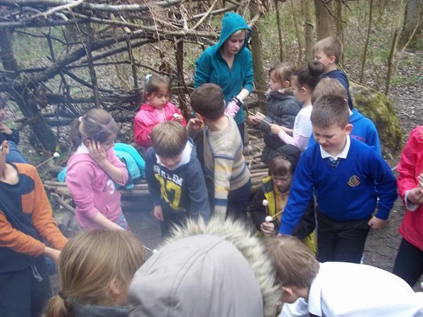 Forest cooking trip