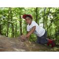 Climbing the big tree