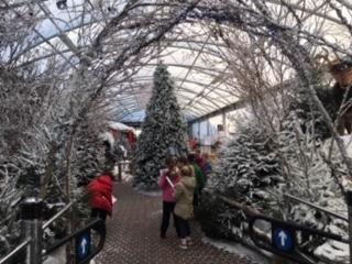 We were inspired by the Winter wonderland display.