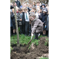 Tree Planting for National Tree Week