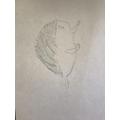 Brilliant Hedgehog sketch