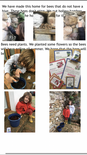 Busy boys making a home for busy bees!