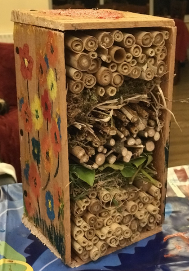 Mya and her Dad made this amazing insect house!