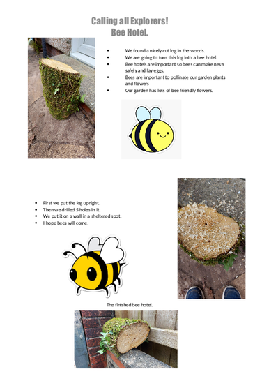 Dylan made a wonderful Bee Hotel!