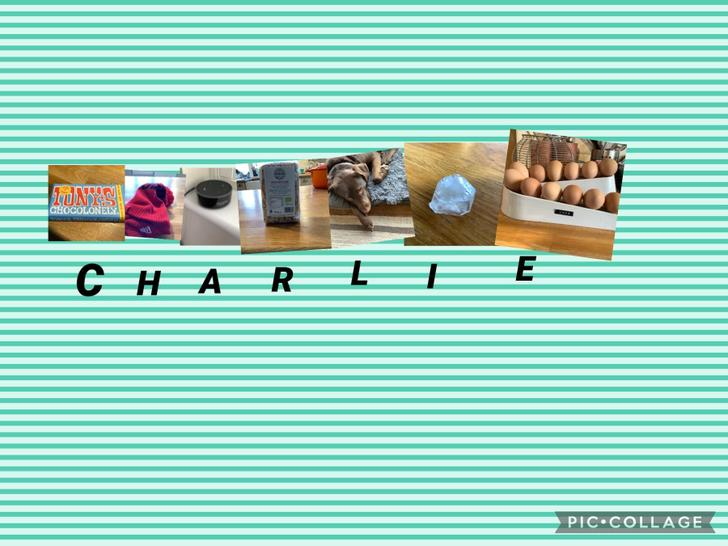 Charlie has made his name using objects from around his home.