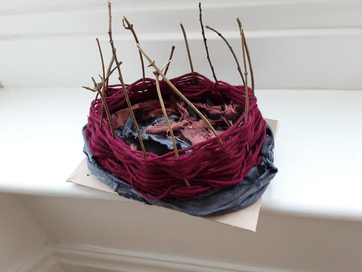 Nell's beautiful bird's nest she made out of sticks, wool and old clothes!