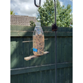 And building a bird feeder